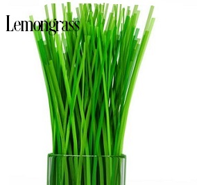 LEMON GRASS WHIPPED BODY SOAP